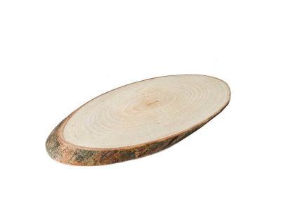 Kütük Ağaç Sade Dışbudak Ağacı Küçük