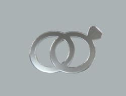 - Alyans Gümüş Pleksi