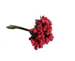 Çiçek Cipso Görünümünde Kırmızı - Thumbnail