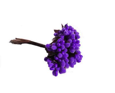 Çiçek Cipso Görünümünde Mor