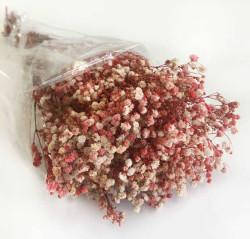 - Doğal Cipso Kırmızı Çiçek 50 Gr.