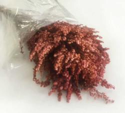 - Doğal Solidego Kırmızı Çiçek 100 Gr.