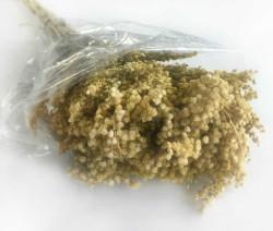- Doğal Solidego Natural Çiçek 100 Gr.