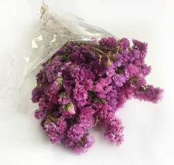 - Doğal Statis Pembe Çiçek 75 Gr.