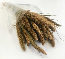 - Doğal Steria Boncuk Natural Çiçek 100 Gr.