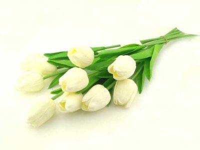 Çiçek Islak Lale Krem