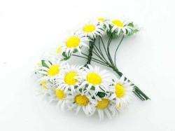- Çiçek Papatya Beyaz