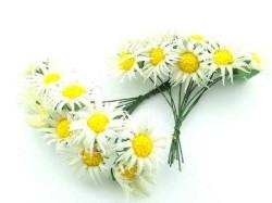 - Çiçek Papatya Krem