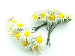 Çiçek Papatya Krem