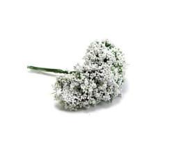 Cipso Çiçek Beyaz 600 Ad. - Thumbnail