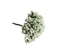 Cipso Çiçek Krem - Thumbnail