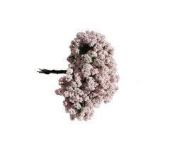 Cipso Çiçek Pembe 144 Ad.