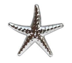 - Deniz Yıldızı Minik Gümüş