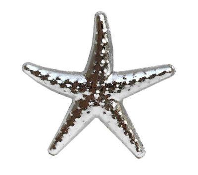 Deniz Yıldızı Minik Gümüş