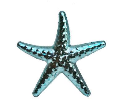 Deniz Yıldızı Minik Mavi