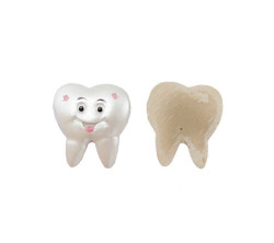 - Minik Diş Pembe