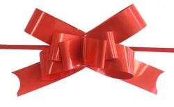 - Fiyonk Çekmeli Rafyadan Düz 2cm Asetat Kutulu Kırmızı