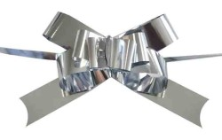 - Fiyonk Çekmeli Rafyadan Metalize 2cm Asetat Kutulu Gümüş