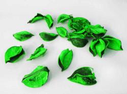 - Gül Yaprağı Kokulu Yeşil 60 Gr.