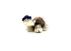 - Kaplumbağa Natural Mavi