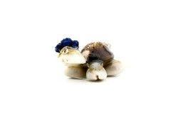 Kaplumbağa Natural Mavi
