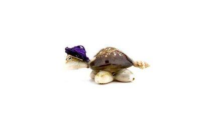Kaplumbağa Natural Mor