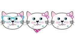 - Maske Mıss Cat Pk:6 Kl:144
