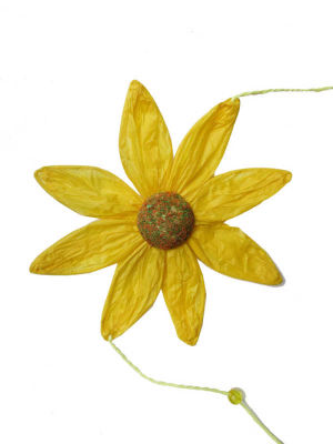 Papatya Çiçeği 5 Li Sarı