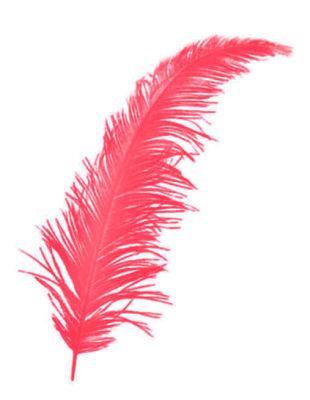 Tüy Kırmızı