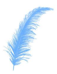 Tüy Mavi