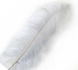 - Tüy ( Organizasyon İçin) 65*70cm Beyaz Pk1 Kl100