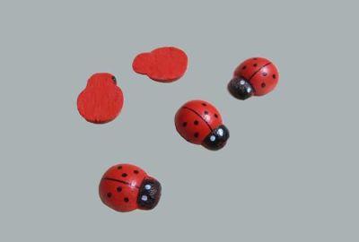 Uğur Böceği Yapışkansız