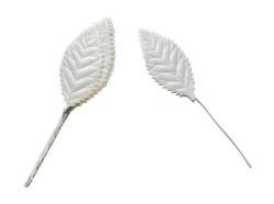 Yaprak Dalı Beyaz - Thumbnail