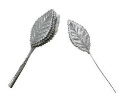 - Yaprak Dalı Gümüş
