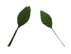 Yaprak Dalı Yeşil - Thumbnail