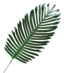 - Yaprak Palmiye Modeli 44 Cm Pk:5 Kl:100