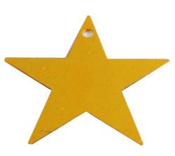 - Plastik Altın Yıldız